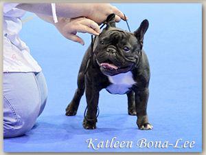 Katleen Bona-Lee